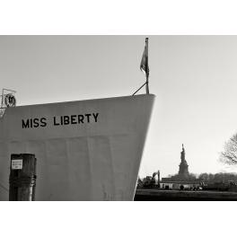 Liberty Island, New York 2011