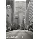 Quartier de Wall Street, New York 2011